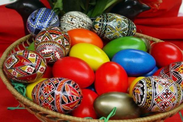 Wielkanocna zbiórka świeżych jaj