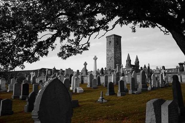 Szczeciński cmentarz do odbioru