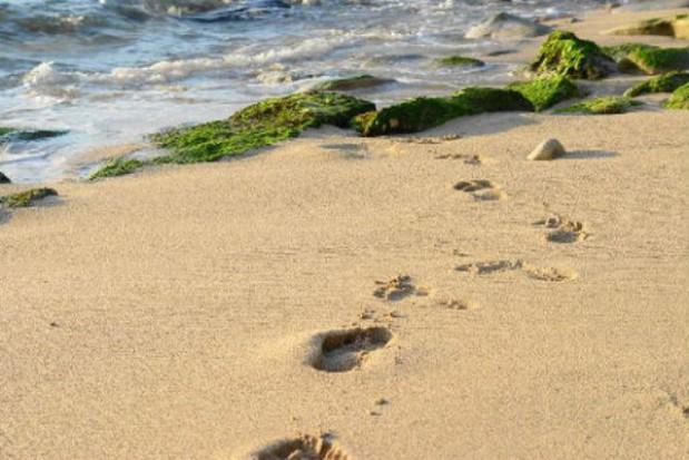 111 osób będzie strzegło kibiców na gdańskiej plaży