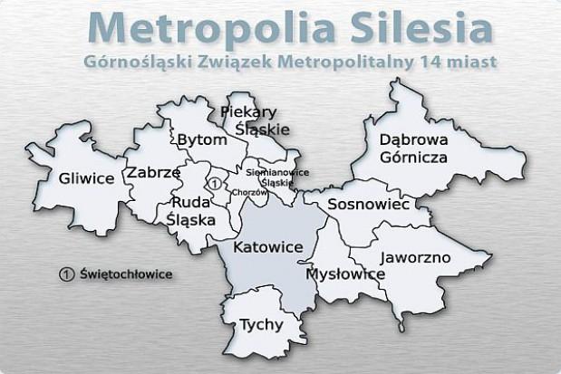 """Metropolia """"Silesia"""" o Zielonej Księdze"""
