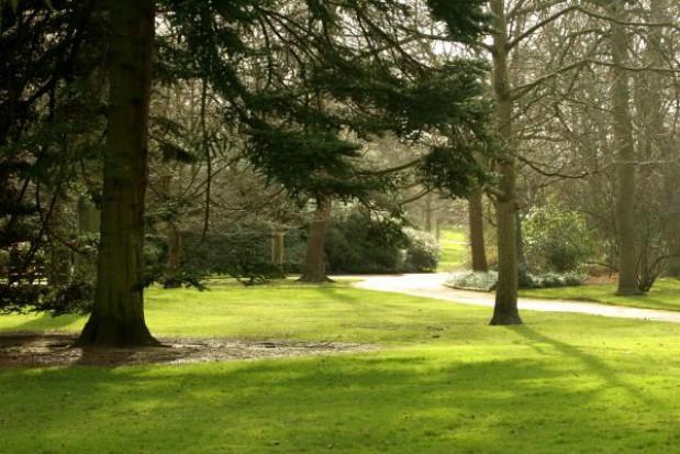 Zabytkowy park jak nowy