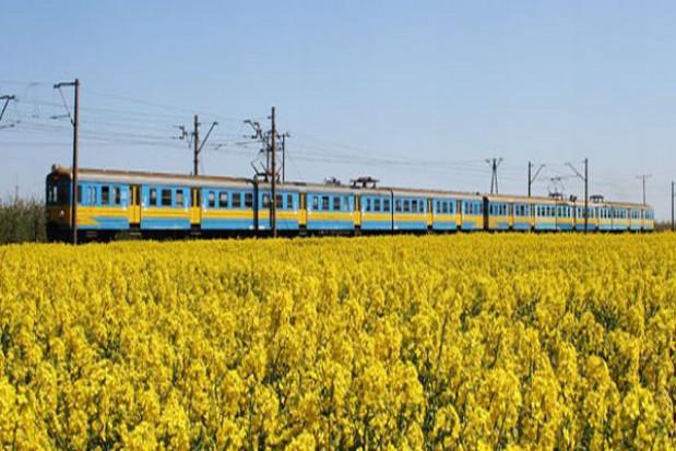 8,5 tys. pasażerów skorzystało z dodatkowych połączeń na Dolnym Śląsku