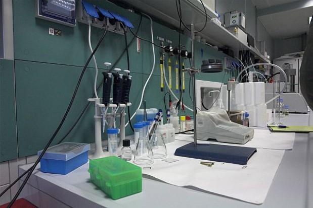 Rozchwytywany klaster biomedyczny