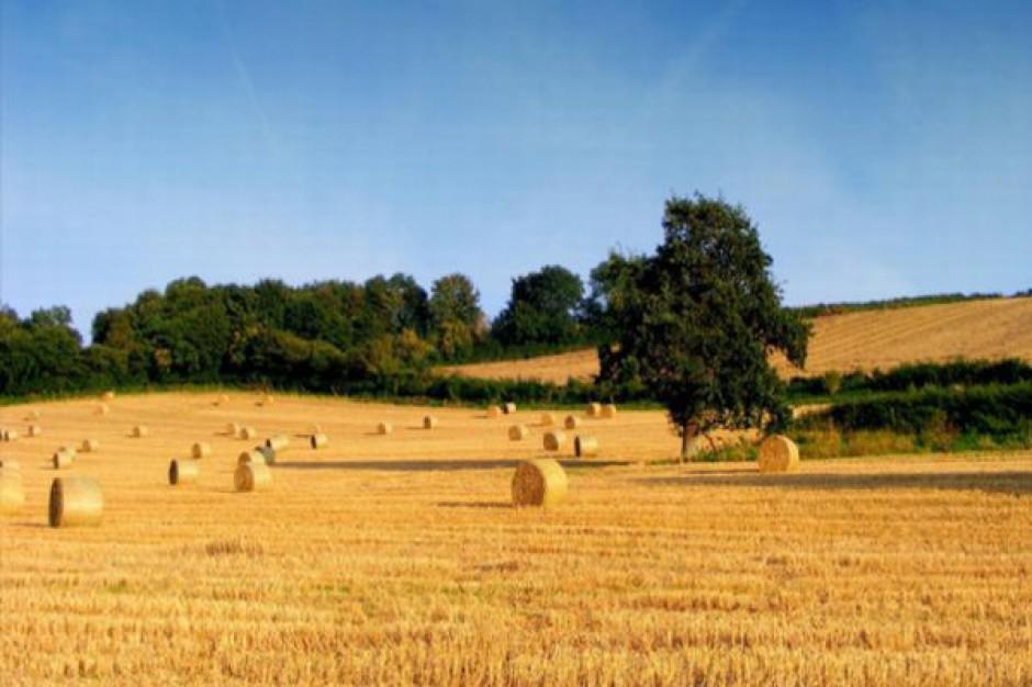 Więcej pracy na wsi dzięki Unii