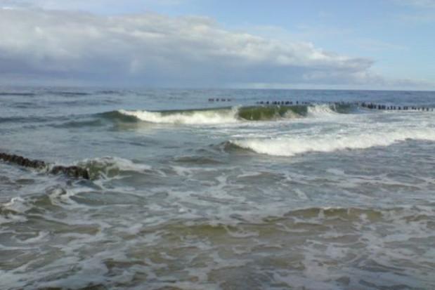 Pomorskie kąpieliska już bez sinic