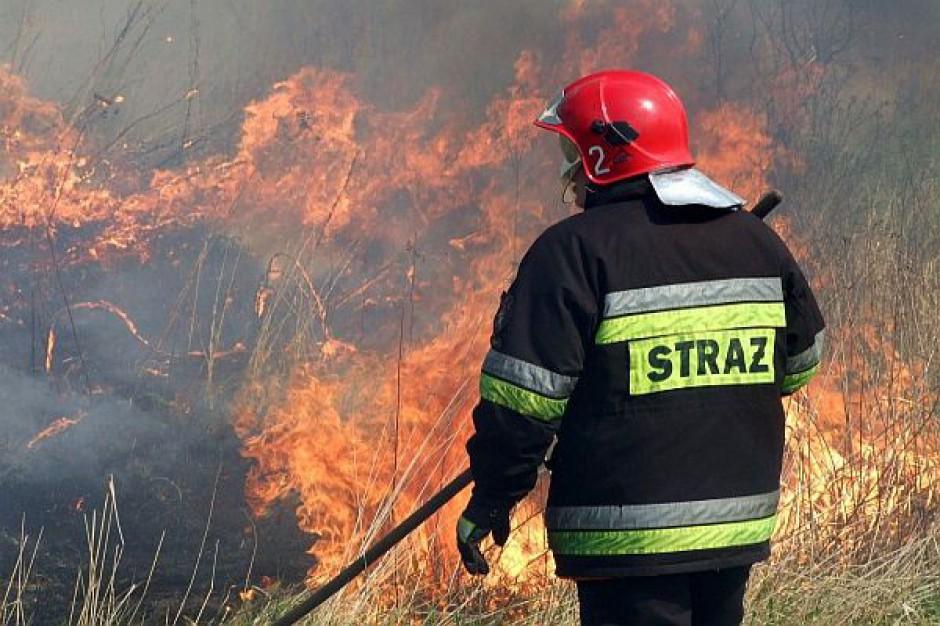 Dotacje strażackie na oku RIO