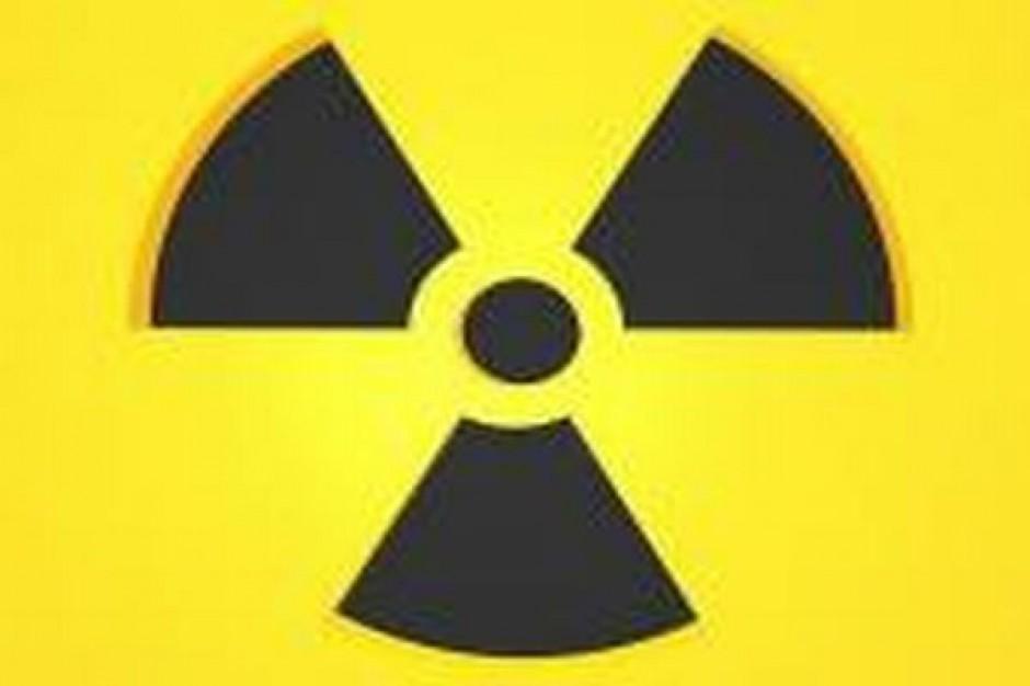 Atomowy sojusz gigantów