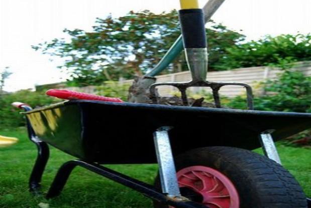 Jeden z przepisów ustawy o ogrodach działkowych przestał obowiązywać