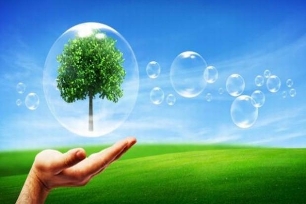 Baza ekologicznych gospodarstw w internecie