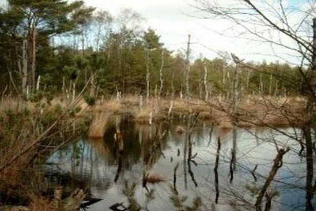 Ekologiczne inwestycje w trzech rezerwatach