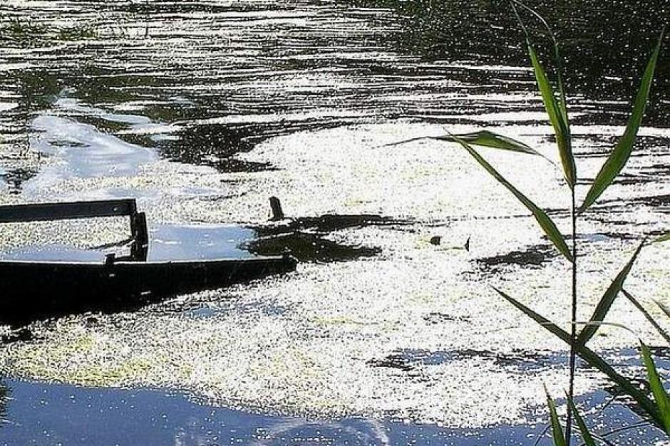 Jak odmulić rzeszowski zalew?