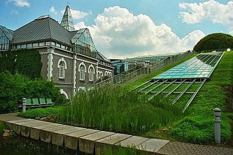 Zielone inwestycje w budynkach publicznych