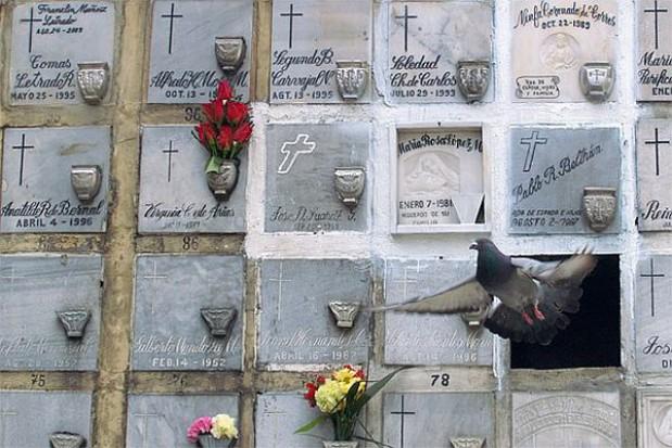 Cmentarz w ramach PPP