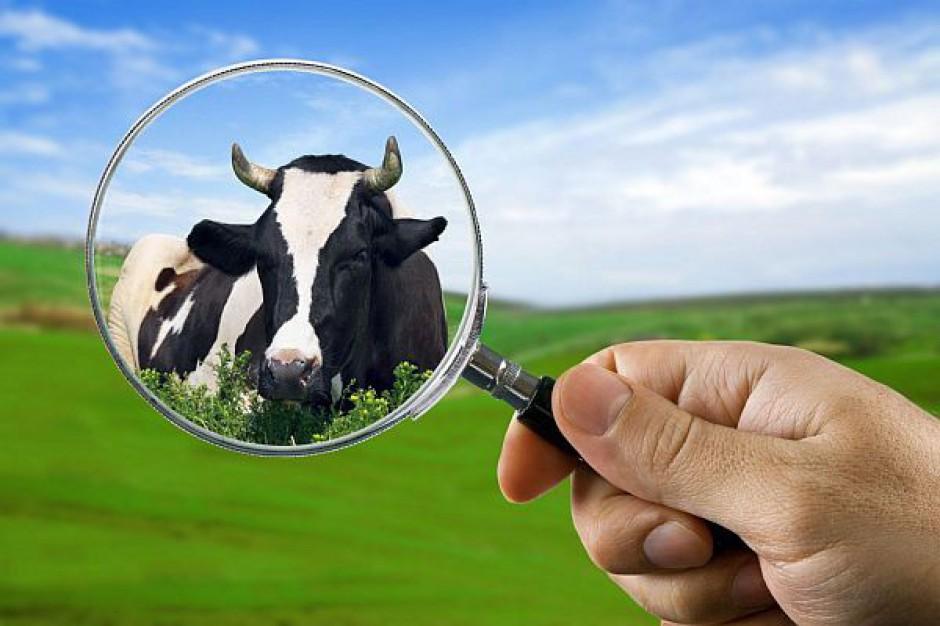 Stracą rolnicy i samorządy