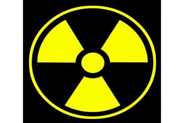 Poznawali atom w Finlandii