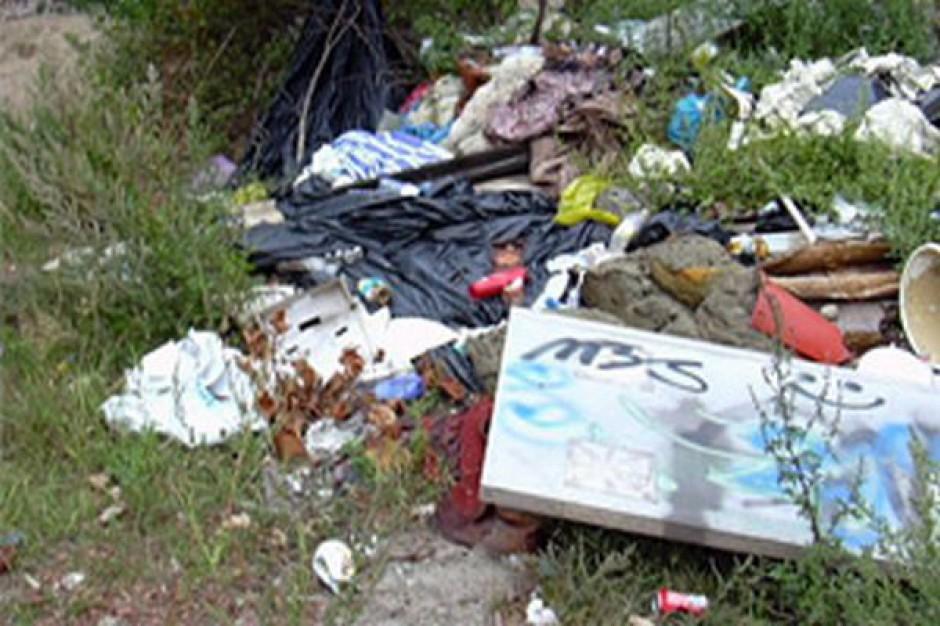 Wywiozą śmieci z pomorskich lasów