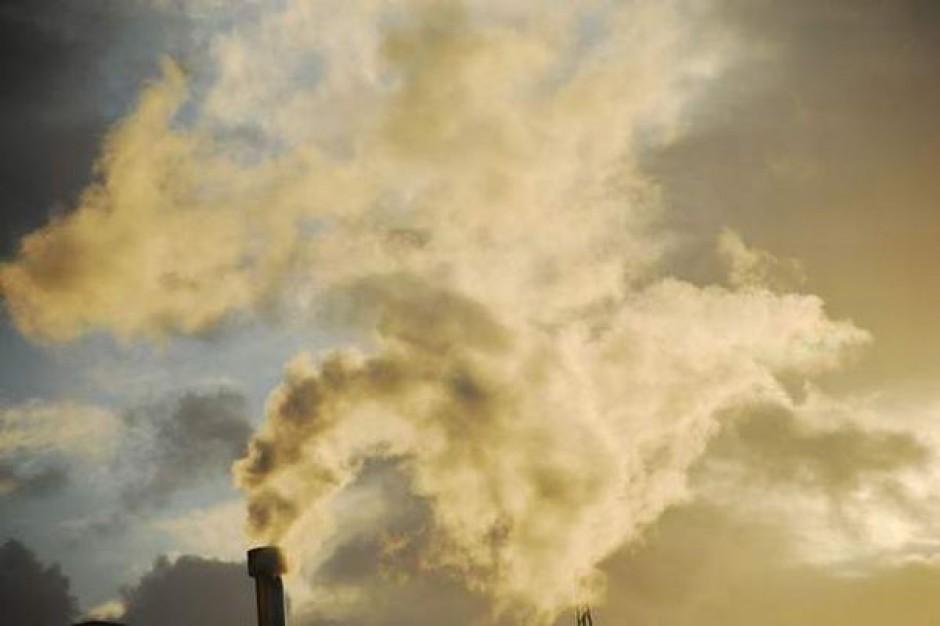 W miastach nie ma czym oddychać