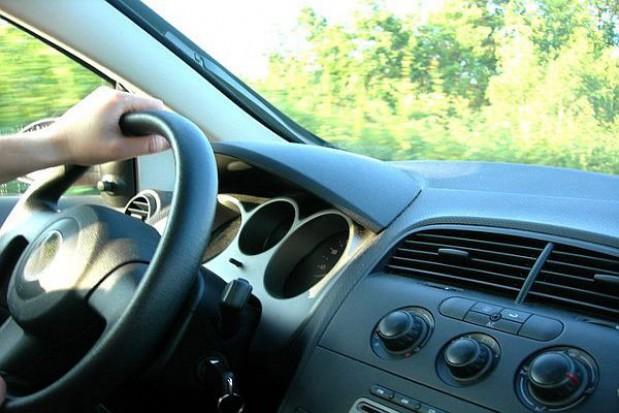 Celnik wlepi mandat drogowy