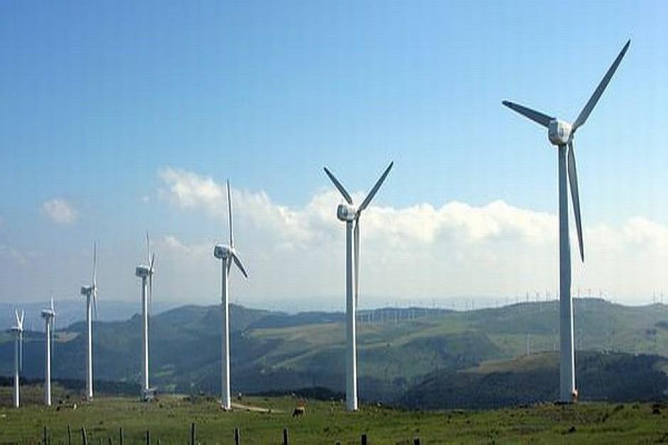 Mieszkańcy Dobiecina nie chcą farmy wiatrowej