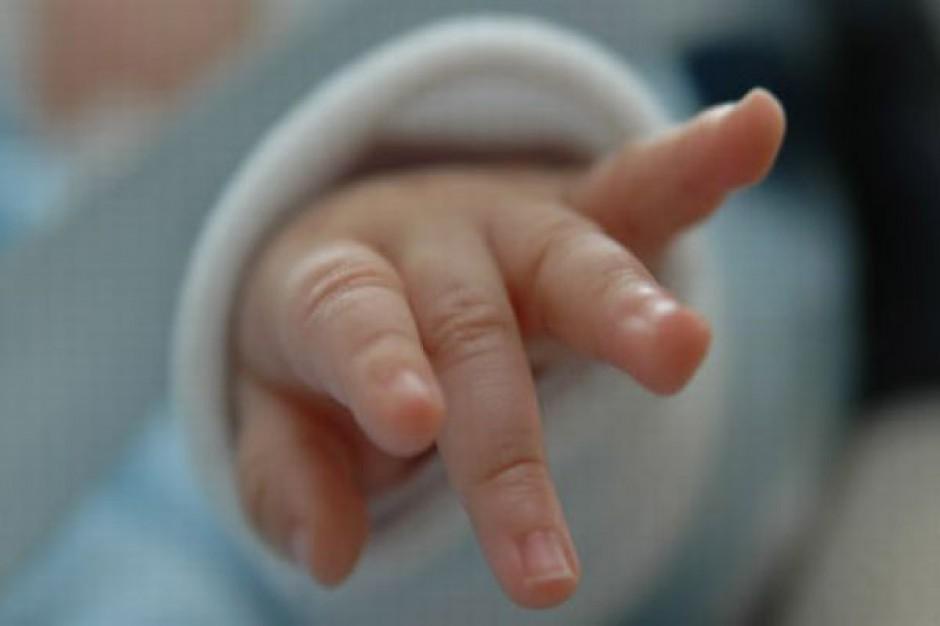 Wnioski o dofinansowanie in vitro w Częstochowie wkrótce