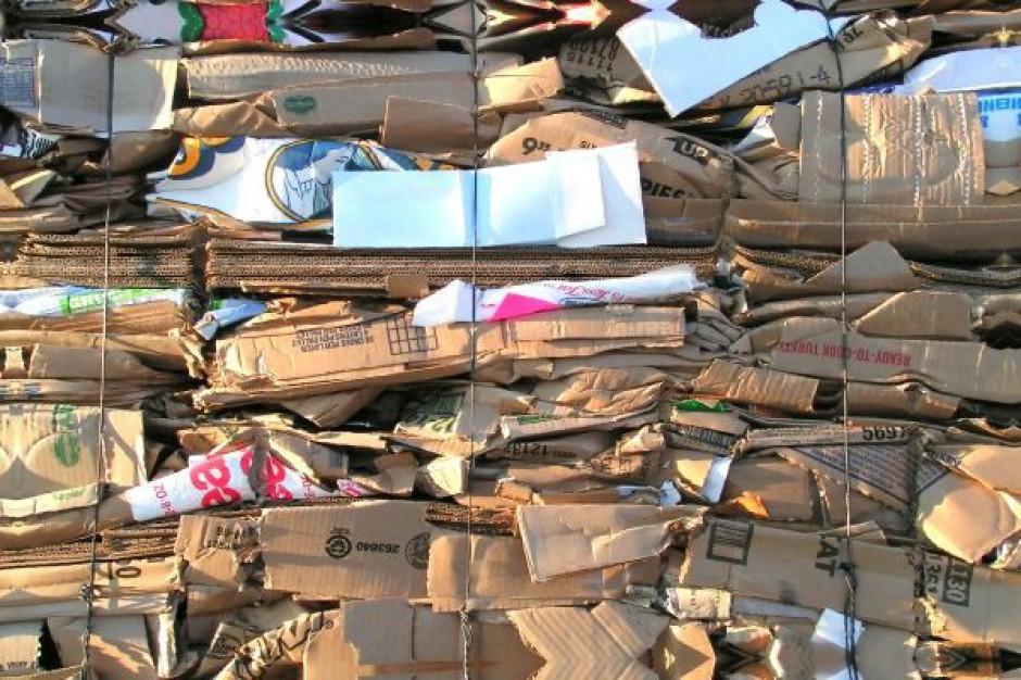 Segregacja odpadów się opłaci