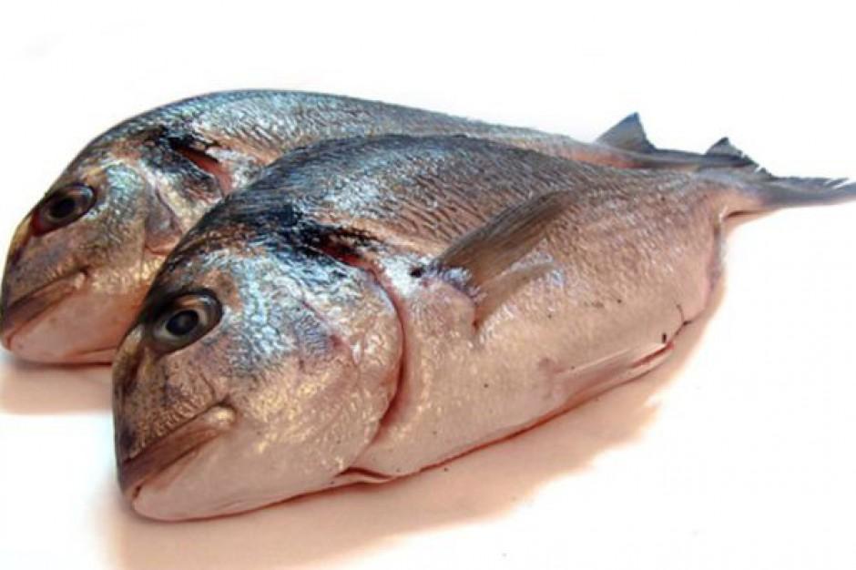 Powstał Dolnośląski Klaster Hodowców Ryb