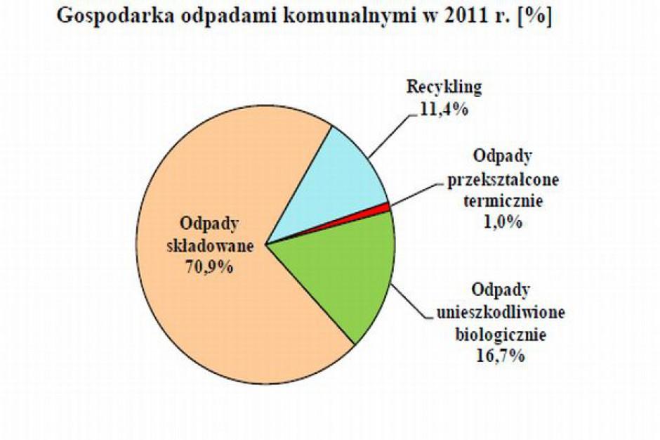 Śmieci nasze polskie