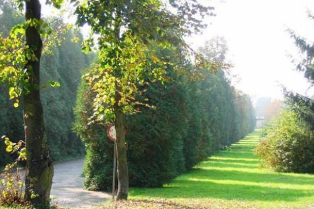 Prywatyzacji uzdrowiska w Horyńcu Zdroju ciąg dalszy
