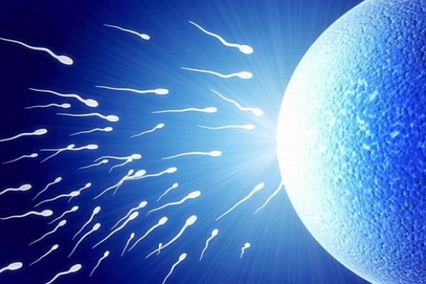 Wojewoda sprawdza uchwałę o in vitro