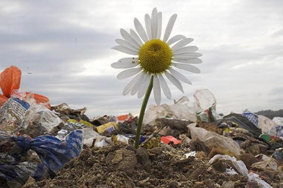 Brakuje spalarni i sortowni odpadów