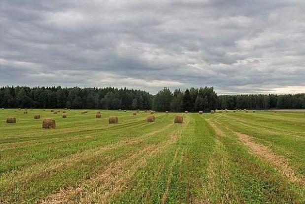 Rolnicy mają kłopoty z kupieniem ziemi