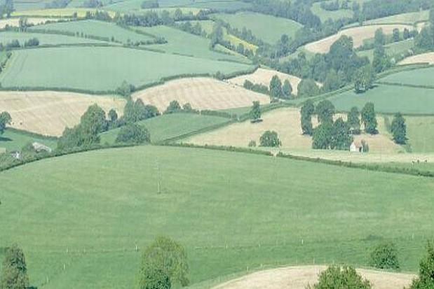 Gminom kiepsko idzie odrolnienie gruntów