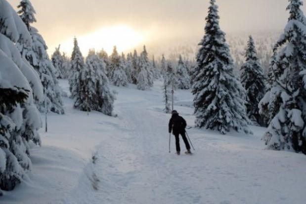 Zimowy hit na Mierzei Wiślanej