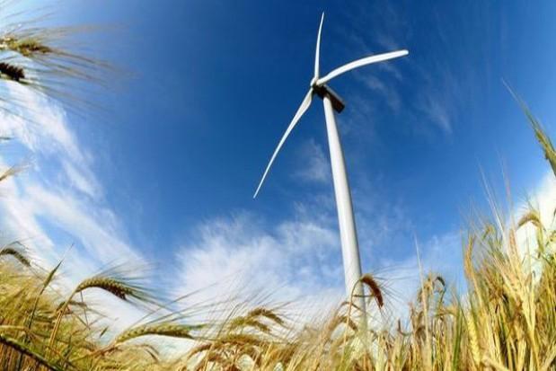 Apelują ws. lokalizacji farm wiatrowych