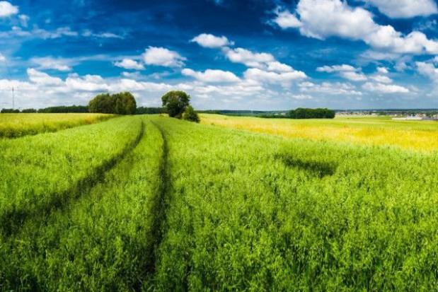 Ziemia rolna staje się dobrą inwestycją