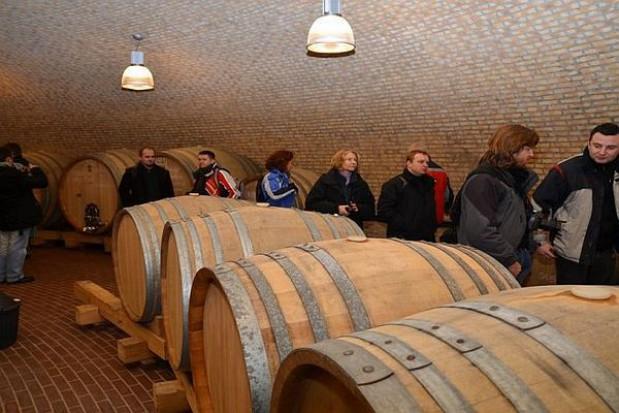 Winnice Podkarpacia czekają na turystów
