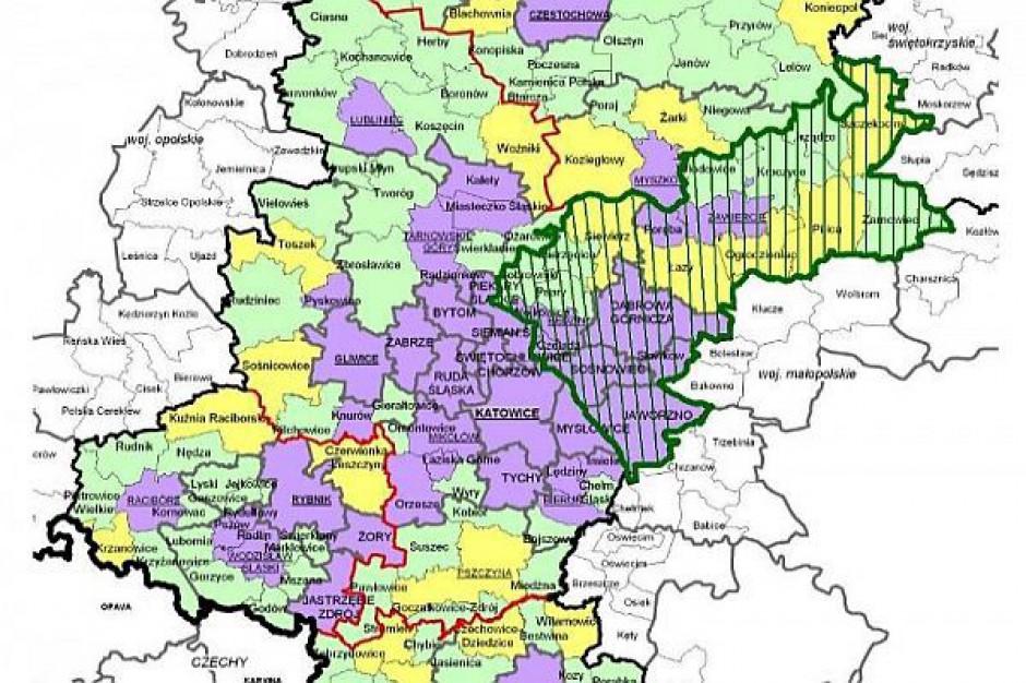 Nici z zagłębiowskiego subregionu