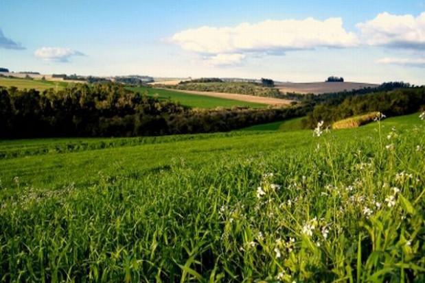 Gdzie najtańsze grunty w Polsce?