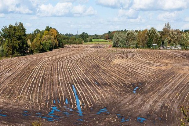 11,2 mln euro na scalanie gruntów