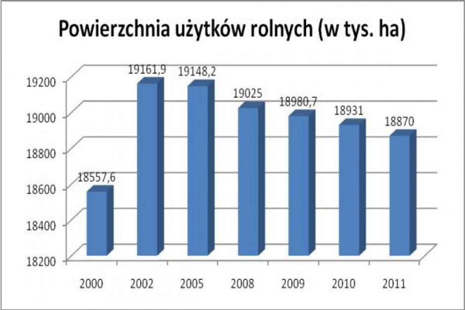 Jak zmieniła się struktura gruntów w Polsce na przestrzeni ostatnich lat?