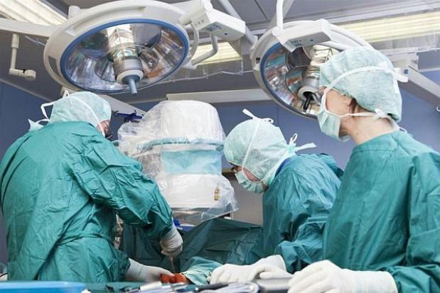 Wzrosła liczba przeszczepów