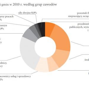 Radni gmin w 2010 r. według grup zawodów