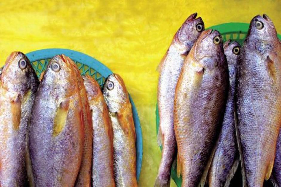Wybudują targ rybny w Rynie