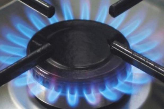 URE: uwolnienie cen gazu dla dużych odbiorców możliwe od lipca 2013 r.
