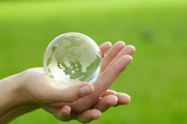 Ekolodzy nie zakwestionują inwestycji