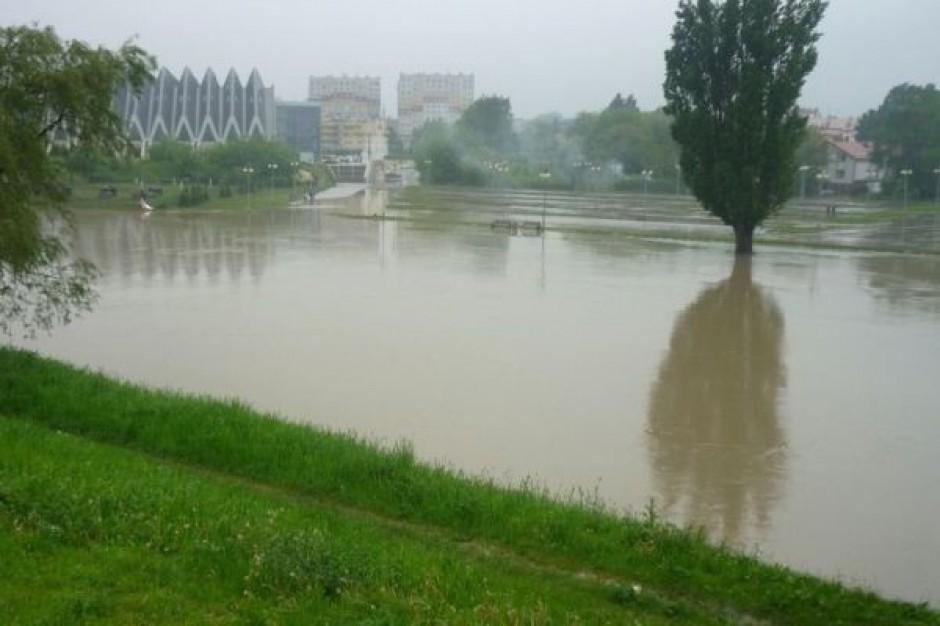 Powstanie nowy most przez Wisłok