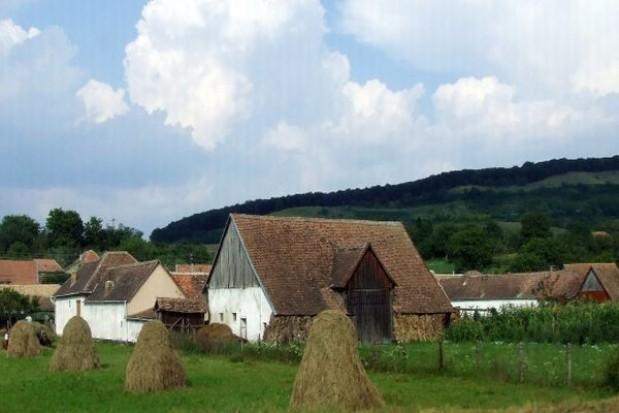 Więcej internetowych nadajników na wsiach i w małych miastach