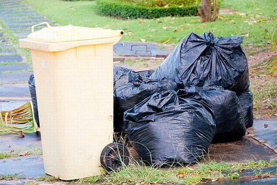 Kary za śmieci tylko z ustawy