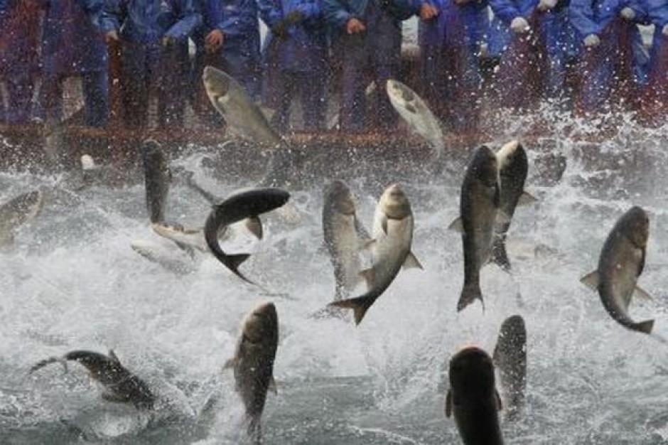 W Bobowie zawarto setną umowę w ramach PO Ryby