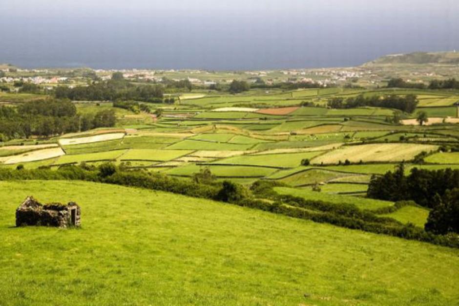 Prawie 12 tys. ha sprzedanych gruntów